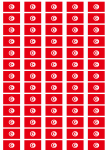 Tunisia Flag Stickers - 65 per sheet